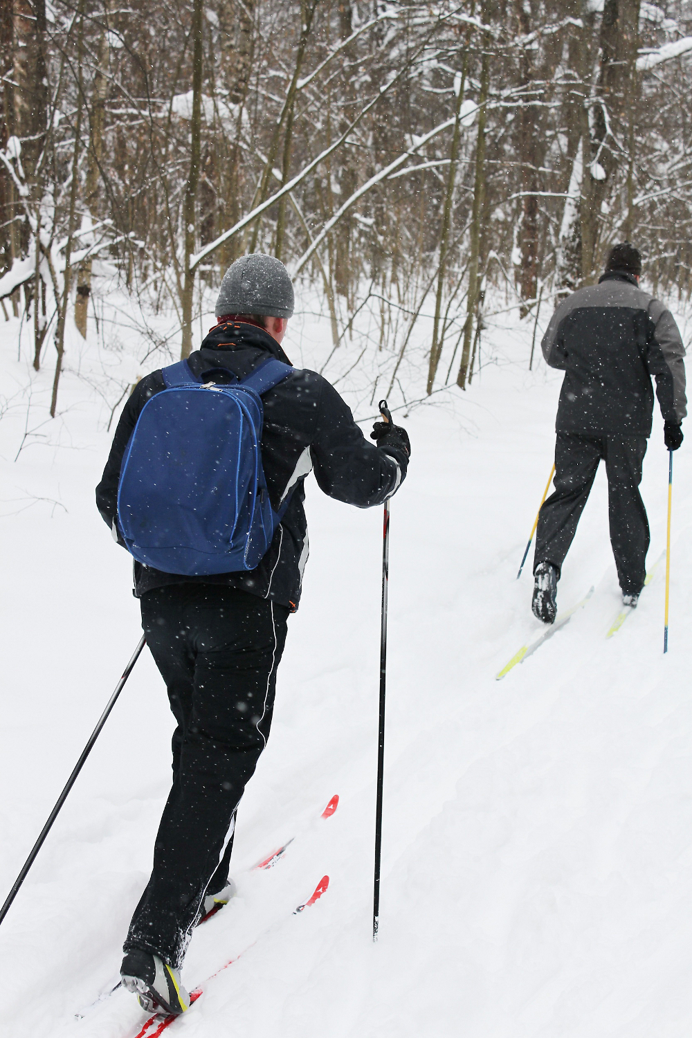 Cross-country skiiing