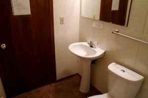 Toilet Sink 2